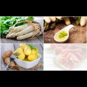 Asparagus_Regular_Large